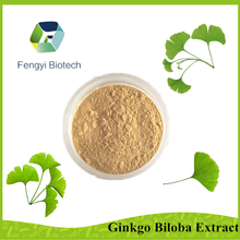 high quality food grade ginkgo biloba extract for dietary supplement
