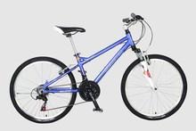 SOLOMO X311-2 26 inches aluminium alloy frame