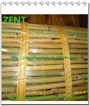 ZENT-74 Natural yellow rolling bamboo fence