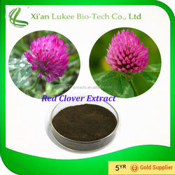 Professional Manufacturer Factory Steadily Supply Red Clover Extract Powder Trifolium Pratense L.