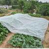 Agriculture Nonwoven Fabric Wholesale/pp non woven fabric for agriculture application/UV resistant PP nonwoven