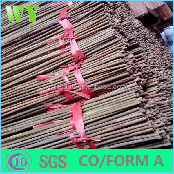 WY-CC 189 сырье тонкин Бамбуковыми палками, дешевые бамбуковые палочки, бамбук трости тонкин для большой запас