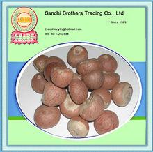 2013 Dried Betel Nuts