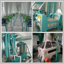 Good quality and best price 50 tons wheat flour mill