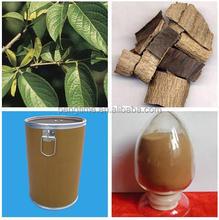 Chinese herb Eucommia Extract Chlorogenic acid powder