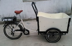 open box cargo tricycle for family use in european countries