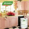 3TREES Acylic Ester Multi-Fuctional Waterproof Paint