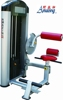 Guangzhou amazing fitness equipmentAMA-8815 back extension gym machine for professional gym