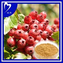 factory price hawthorn fruit extract Isoflavone