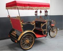 Auto electric rickshaw price