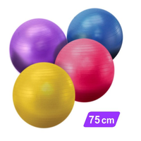 Yoga Gymnastic Ball Pilates Ball Wholesale Exercise Ball 75CM