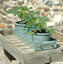 Garden Set include metal plant pots and tray