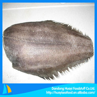 Best frozen plaice/flatfish supplier