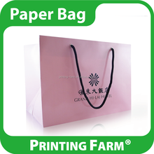 Excellent Customized Foldable Shopping Paper Bag