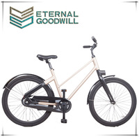 EB5012 adult bicycle 2 speeds aluminum alloy city bike 28 inch two wheel bicycle hot sale