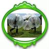 1.2m/1.5m/1.7m top quality PVC/TPU body zorb ball,soccer bubble,human bumper ball