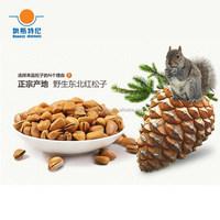 nut fruit indian nut hot sale