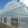 Low Cost 10 Years Warranty Double Wall Plastic Polycarbonate Agriculture Greenhouse for Sale
