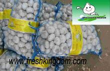caliente venta de ajos de china