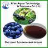 /product-gs/gmp-iso-kosher-fda-certificated-acai-berry-powder-free-sample-4-1-10-1-20-1-2010087296.html