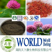 Hot sales plant extract Red clover extract/Isoflavones 8%-60%/Anti-spasm Free sample