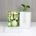 shenzhen purfume difusor de aire de papel ambientador