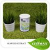 100% Soluble Organic Fertilizer Sargassum Seaweed Fertilizer