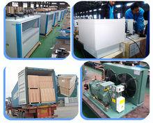 Compressor refrigeration unit for freezer room