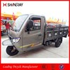 Made in China Hot Sale OEM High Qulaity 250Cc 3 Wheel Motorcycle Car