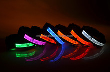 Sale Exceptional Dog Collar Band LED 7 Colours Teddy, Size S,M,L,XL