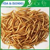 100% Pure Natural Reptile (bird )Good ingredients Dried Mealworms For Pet Food