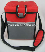 2012 New Design Insulated Cooler Bag with leak proof pp container