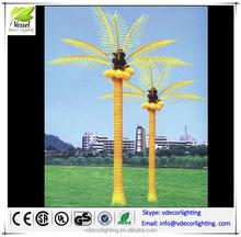 china factory palm tree fruit edible