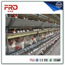 agricultural equipment and tools for the Algeria right to adjust the output current chicken cage