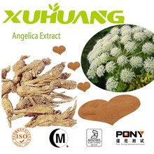 Activate blood circulation Angelica extract 10:1