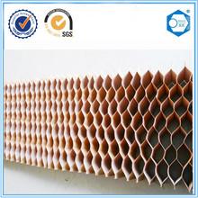 Composite back doors of paper honeycomb core