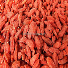 Factory wholesale high quality ningxia goji berry/import dried goji berries