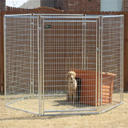 Galvanised Dog Run Panels 25mm outer tube Door Right Gate Dog Kennel