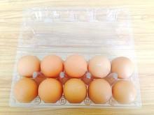 10 Quail eggs clear pet plastic egg carton/quail egg trays/packing quail egg trays