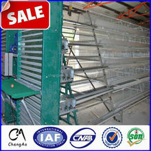 3 layer 24 nests chicken cages/chicken house,coops/chicken farm hot sale in South Africa