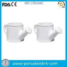 Decorative mini ceramic watering can shape indoor plant holder set 2