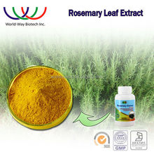 rosemary extract,free sample China supplierplant extract for fish/meat nature preservative rosemary leaf extract