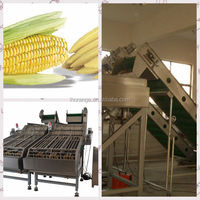 OR series special design stainless steel Fresh sweet Corn peeling Machine