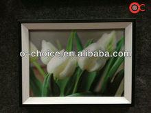Ck-11 hermosa flor diseños tejido 3d pintura de imagen
