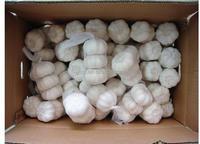 fresh garlic of 2014 china