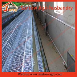 Top quality stylish strong automatic layer cages for sale