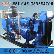 80kw gas power plant alternator generator