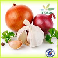 china fresh garlic for sale
