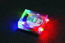 color changing led flashing shoe light