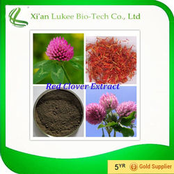 Natural health food 8%-40% isoflavones red clover extract,HACCP FDA red clover extract powder,manufacturer red clover extract